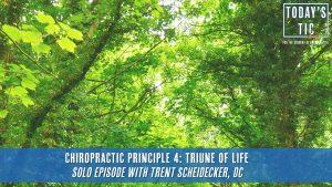Chiropractic Principle 4 : Triune of Life