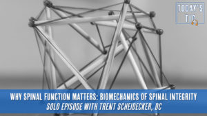 Why Spinal Function Matters: Biomechanics of Spinal Integrity
